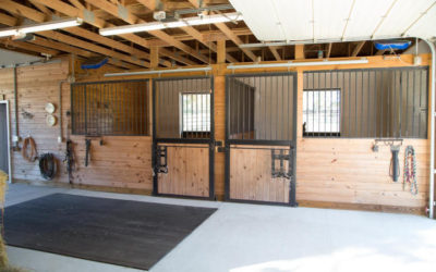 Tips To Get Your Real Estate Horse Property Ready For Selling