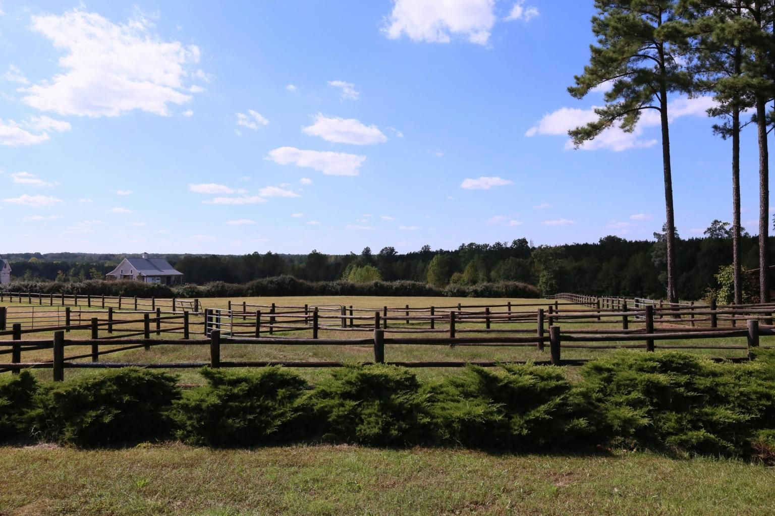 Horse Farms Southern Pines NC
